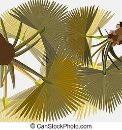 lumière, feuilles, luxuriant, stylisé, ventilateur, fond, paume