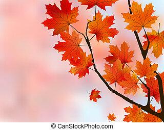 lumière, feuilles, peu profond, foyer., orange, érable