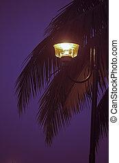 lumière, poteau lampe, rue