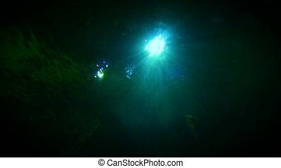 lumière, résumé, eau, 4k, fond, sous