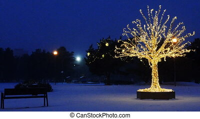 lumières, arbre, noël, or