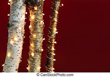 lumières, branches, noël, bouleau