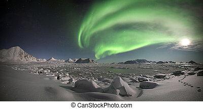 lumières septentrionales, -, arctique, paysage