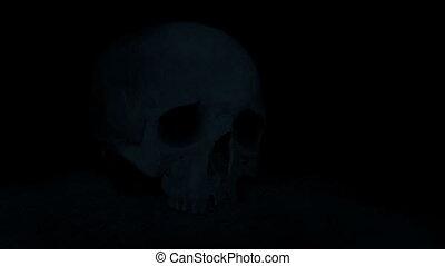 lumières, torche, haut, crâne, terrestre
