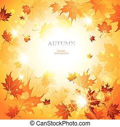 luminoso, outono, fundo