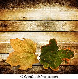 luminoso, outono sai, ligado, a, madeira, fundo
