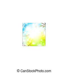 luminoso, primavera, fondo