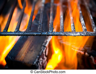 luminoso, urente, coals., fiamme, griglia