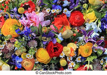 luminoso, wildflower, cores, arranjo
