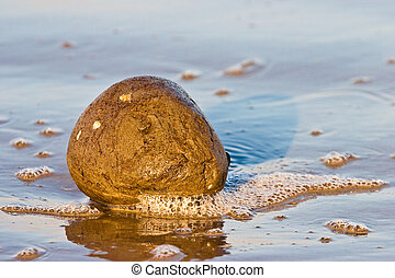 Lump of sand in the water