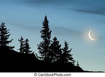 luna, creciente, noche