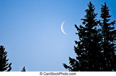 luna medialuna