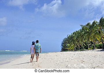 luna miele, coppia, camminare, su, uno, tropicale pacifico, isola, spiaggia, in, rarotonga, cucini isole