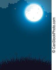 luna, notte, pieno