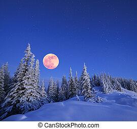 luna piena, in, inverno