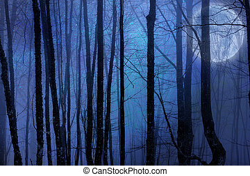 luna piena, scuro, foresta, notte, agaist