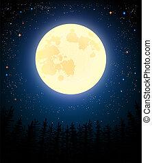 luna, pieno, forest., pino, shines