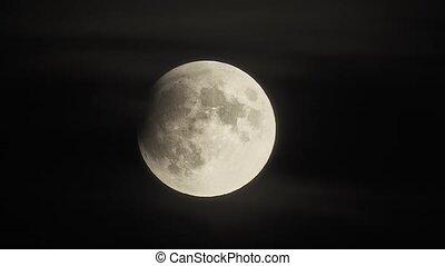 lunaire, 1260mm, partiel, éclipse, realtime