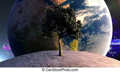 lune, éléments, arbre, planète, meublé, nasa, engendré, 3d, ...
