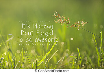 lunes, inspirador, saludo, -, su, lunes, haga no, olvídese, a, ser, awesome.