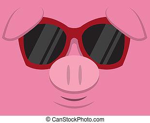 lunettes soleil, cochon, frais
