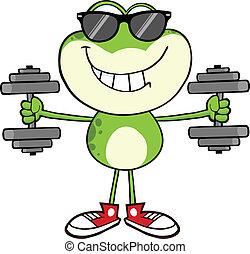 lunettes soleil, sourire, grenouille, vert