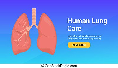 Lung anatomy health banner concept. Tuberculosis asthma human lung doctor biology