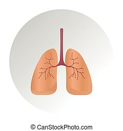 Lung cancer diagram in detail illustration. Lung Anatomy Vector Lung, icon, Human Lungs System