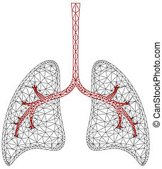 Lung Graphic - A geometric view of a set of lungs