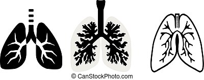 lung icon on white background