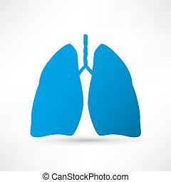 lunga, mänsklig, ikon