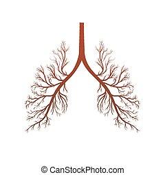lungen, abbildung, ikone