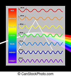 lunghezza onda, colori, in, il, spettro