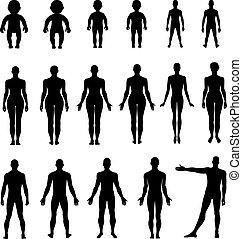 lunghezza, pieno, fronte, dorso umano