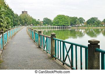 lungo, ponte, accanto, lago, con, albero pino, albero grande, in, parco pubblico