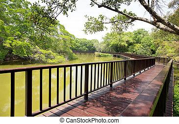 lungo, ponte legno, attraversare, lago