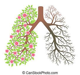lungs., 影響, 以後, 抽煙, 以及, 疾病
