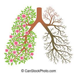 lungs., dis, après, effet, fumer