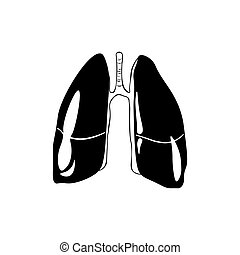 Lungs Human anatomy. hand drawn vector illustartion isolated on a white