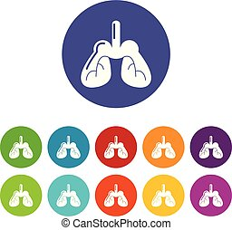 Lungs icons set vector color