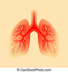 Red inflamed human lungs vector illustration