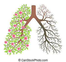 lungs., secondo, effetto, malattia, fumo