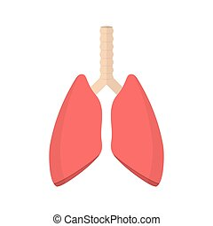 lungs., système pulmonaire, humain