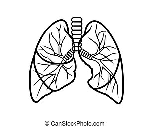 lungs - vector black and white outline isolated lung