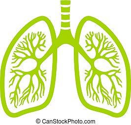 Green lungs vector icon isolated on white background