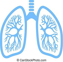 Lungs vector icon isolated on white background