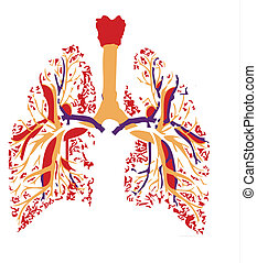 lungs vital organ for breathing