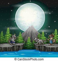 lupi, notte, tre, paesaggio, pietre