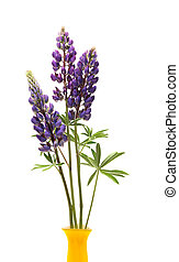 Lupin Flowers In Vase - Closeup of yellow vase with few blue...