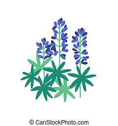 Lupine flat vector illustration. Purple meadow flowers isolated on white background. Flowering plants with petals and green leaves. Botanical items. Herbs, nature, flora. Blossoming wildflowers